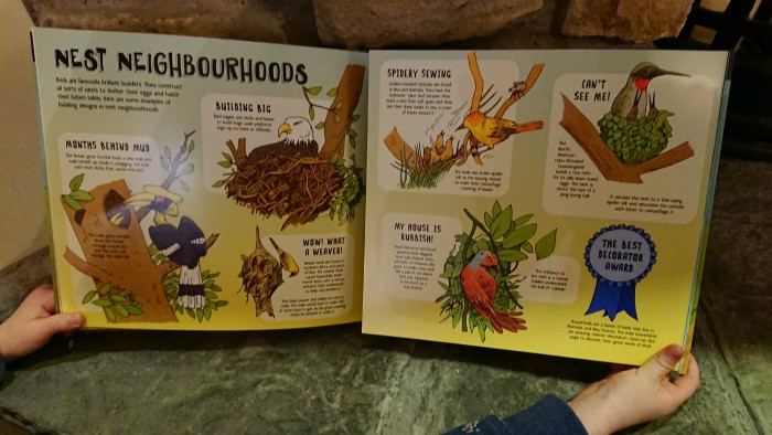 Lonely Planet Kids Books animals build