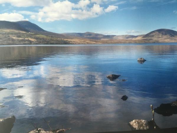 Behind a Thomas Moran Landscape 1