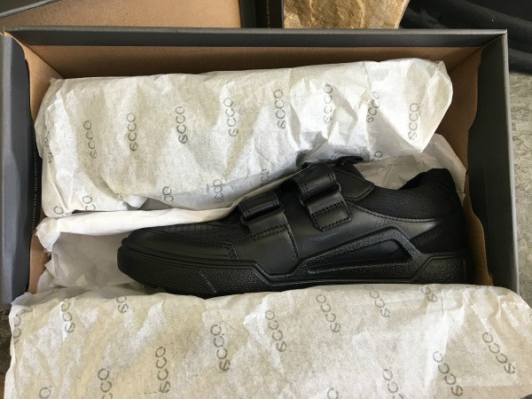 ecco shoes in the box