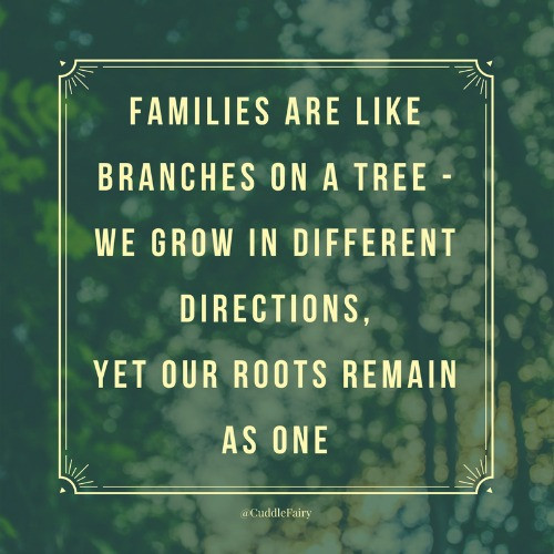 families are like branches of a tree quote