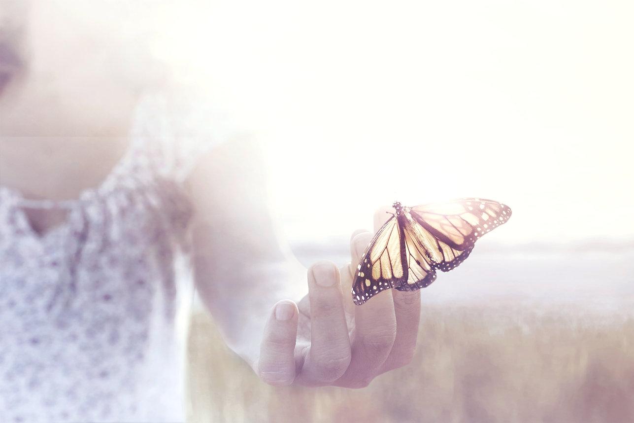 butterfly%20in%20hand_edited.jpg