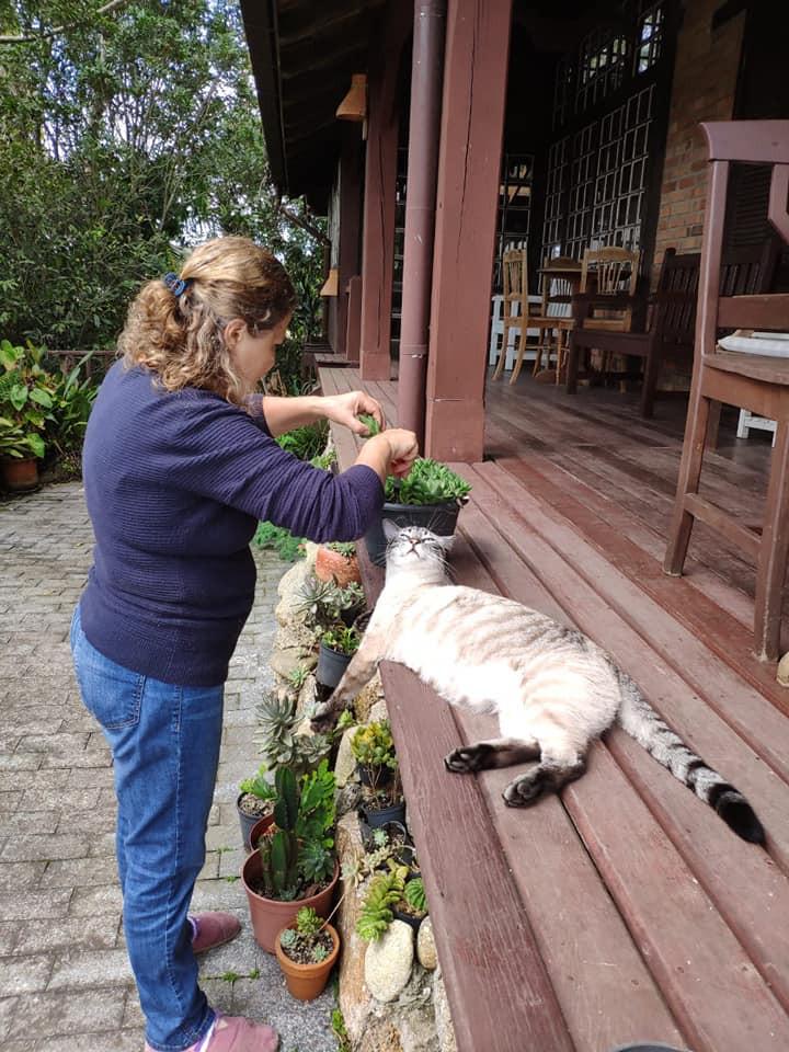 A proprietária da Pousada Caminho do Rei, Mônica, acompanhada do preguiçoso gato Chico, cuidando pessoalmente das folhagens e belas flores que ornamentam o jardim