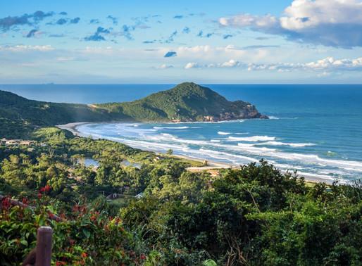 O que tem de tão atraente na história desta pequena baia de 2km de Praia, do Rosa Norte ao Rosa Sul.