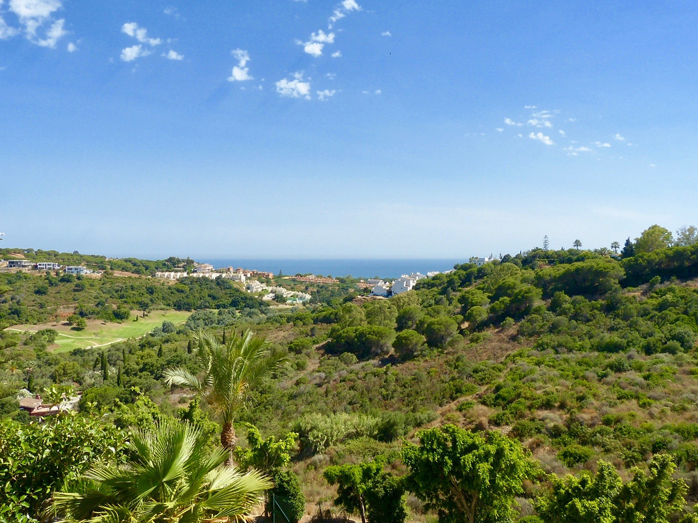 A view of the natural green landscape of La Reserva de Marbella area and Mediterranean Sea
