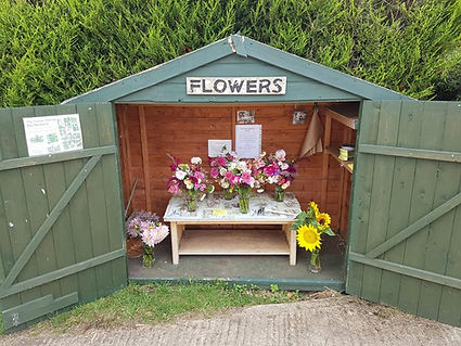 Sale shed.jpg