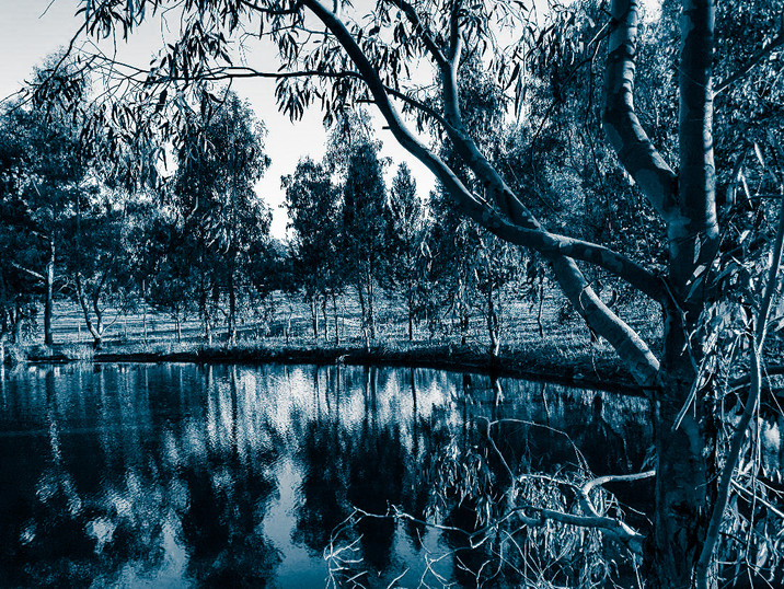 Ashby Grove NE Victoria