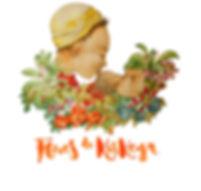 Flores de Kiskeya, calcetines nicers solidarios
