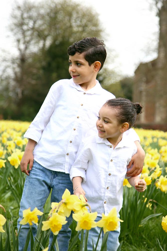 Daffodil Spring Shoot Days
