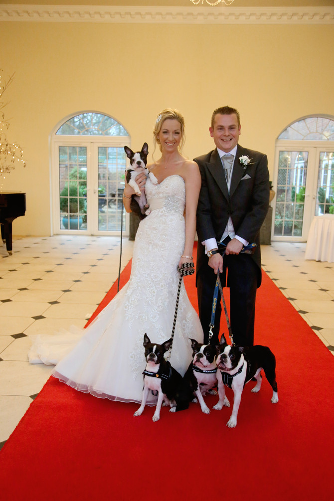 Sophia and Craig's Wedding Day at Whittlebury Hall (oh and their dogs of course!)