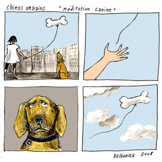 Méditation canine