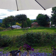 Relaxing in Y Cwt's private garden