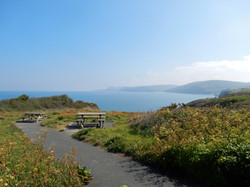 Picnic area on walk from Aberporth