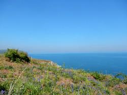 Aberporth to Tresaith coastal walk