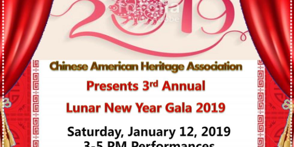 3rd Annual Lunar New Year Gala 2019 (1)