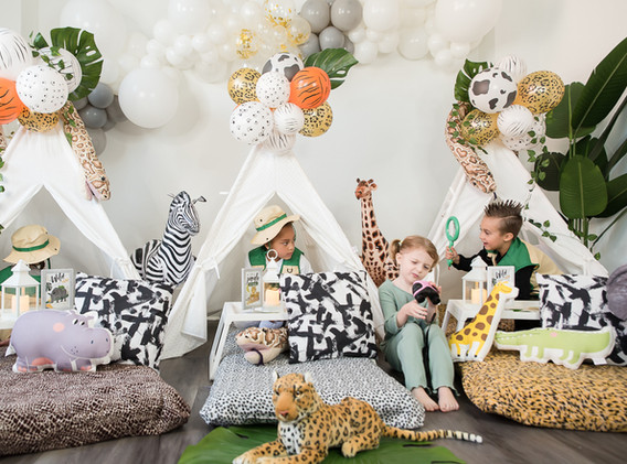 Animal Themed Party Supplies Rental