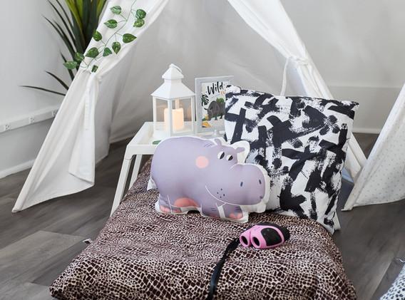 Safari Sleepover Party rentals
