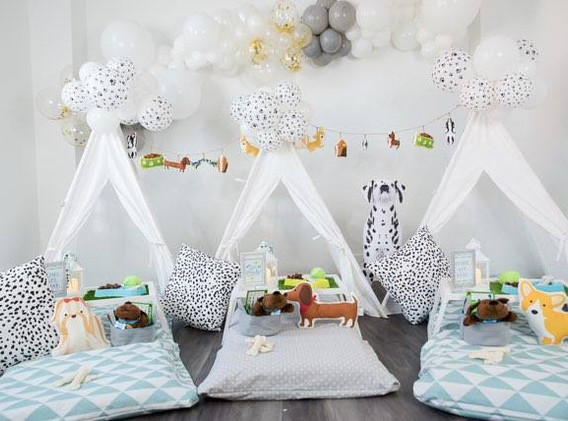 paw themed birthday party rentals