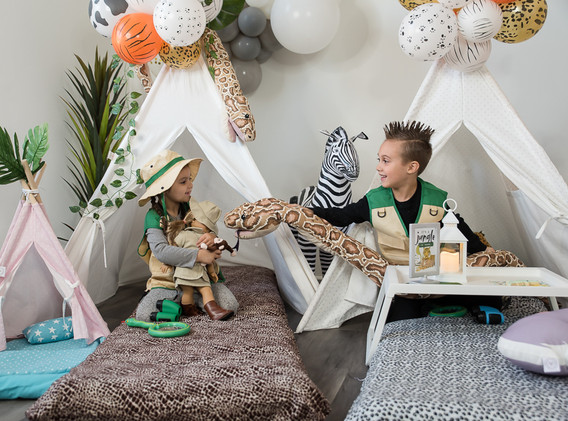 animal themed party supplies rental PA