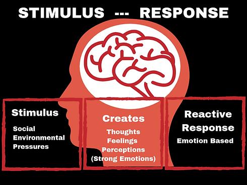 STIMULUS --- REACTION.png