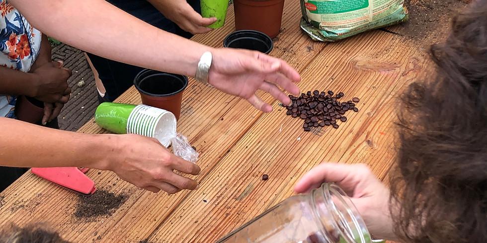 Sunday Seed Soirée + Brunch