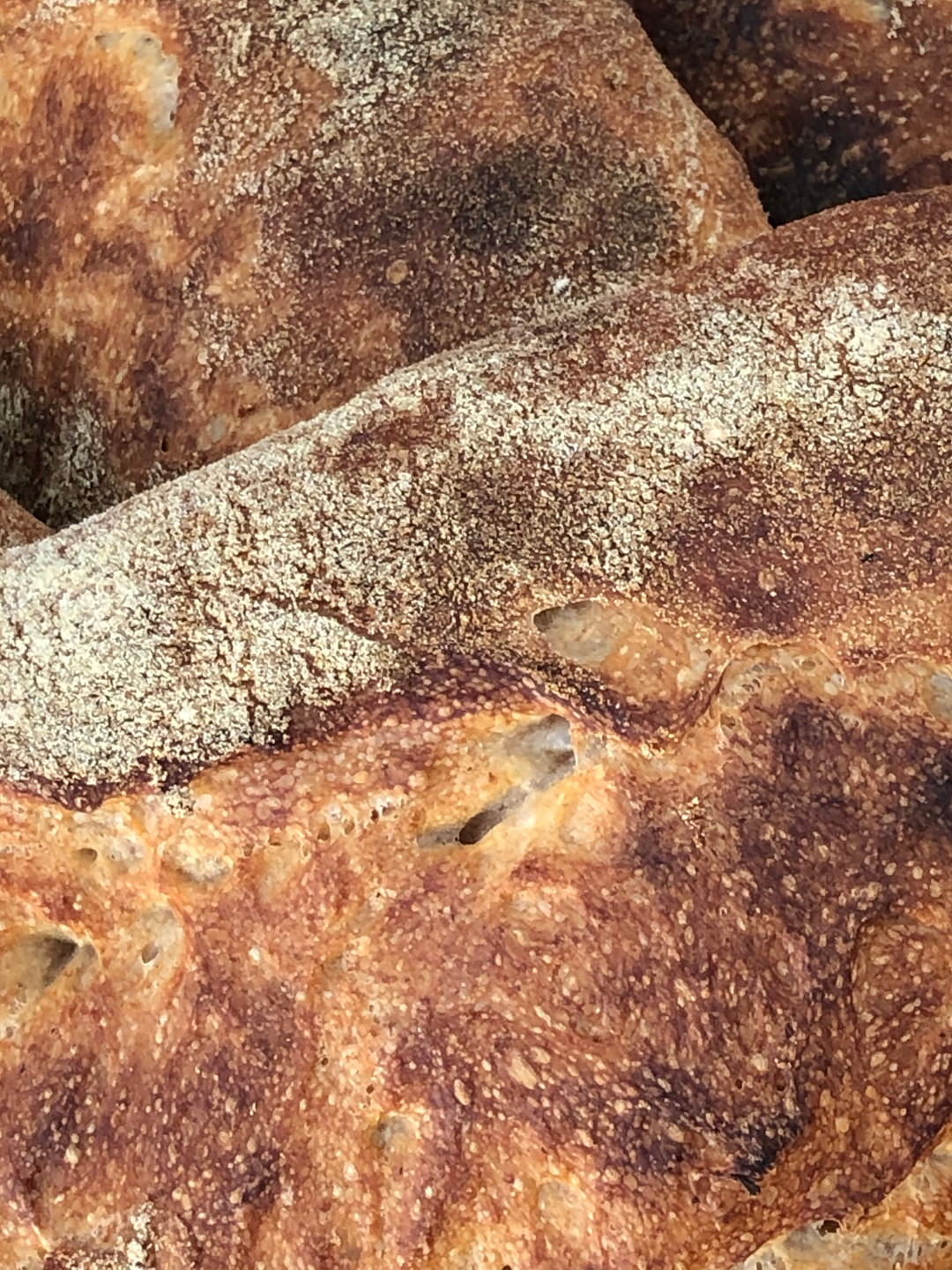 Country Sourdough Loaf by Artisan Bryan at Mima Market