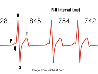 Heart Rate Variability (Part 1 of 2)