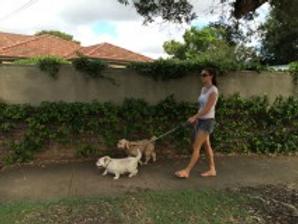 Barbora dog walking.