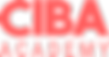 academy_logo-salomon_edited.png