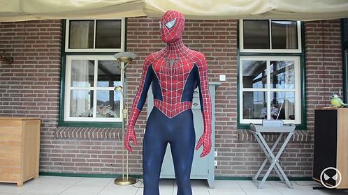 Fantasia Spider-man Tobey Maguire com kit teias e simbolos