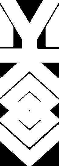MYKOOL White Logo