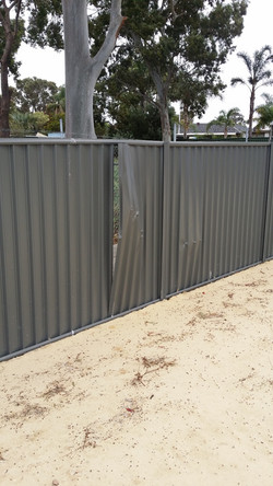 Not the hardiest fence!