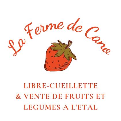 Rouge Cœur Médical Logo.png