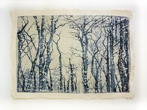"Evi Schartner ""Trees II"""