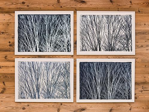 "Evi Schartner ""Four Seasons"""
