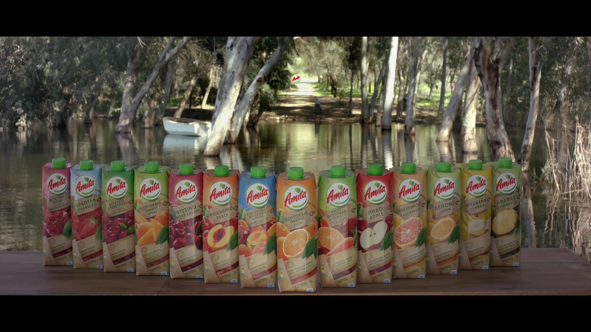 Amita - 14 Delightful flavors - 02