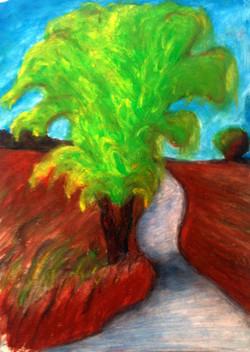 L'albero dell'Aurora