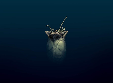 WILLIAM GIBSON'S ALIEN 3 #1 Review