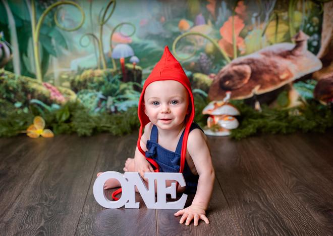First Birthday Garden Gnome.jpg