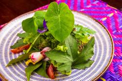 Salada Pancs