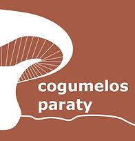 cogumelos party.jpeg