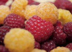 lampone_frutto