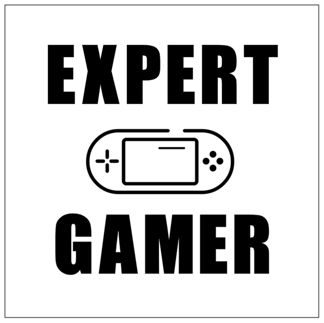 Expert Gamer.png