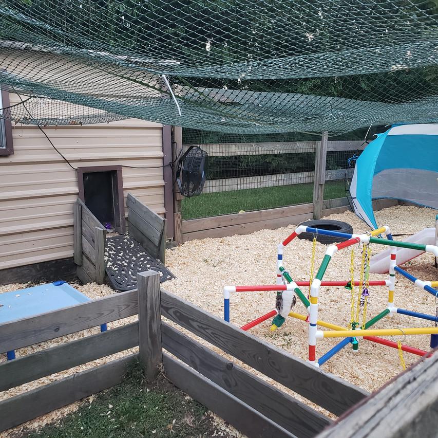 playyard 4wk