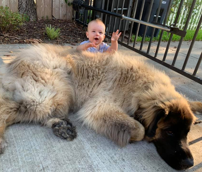 Teddy and baby bubba