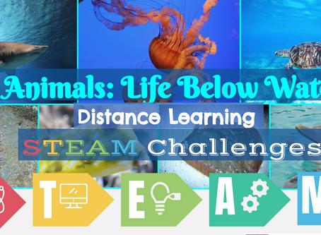 Animals: Life Below Water STEAM Challenge