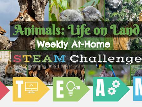 Animal: Life on Land STEAM Challenge