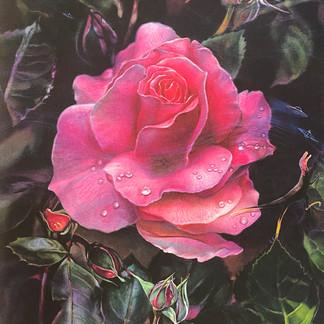 """Prehistoric Rose"""