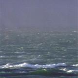 """Sea of Waves"""