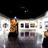 Exhibit Space in the Sun City Museum of Fine Art in Arizona.
