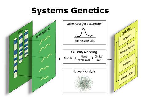 system_gen.png